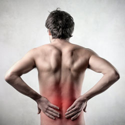 Fort Myers Slipped Disc Chiropractor